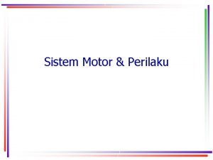 Sistem Motor Perilaku Alasan Sistem Motorik Penting Aktivitas