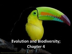 Chapter 4 Biodiversity and Evolution Biodiversity Evolution and