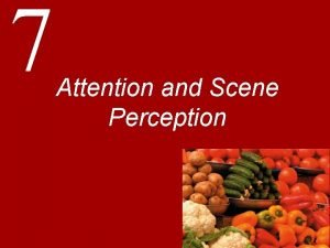 7 Attention and Scene Perception Introduction Attention Any