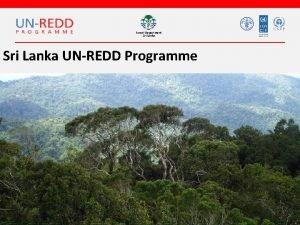 Forest Department Sri Lanka UNREDD Programme Forest Department