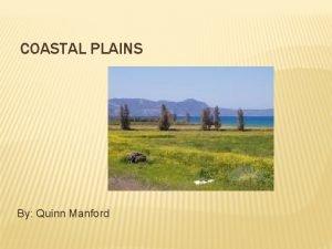 COASTAL PLAINS By Quinn Manford COASTAL PLAINS LAYOUT