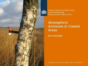 Atmospheric Ammonia in Coastal Areas Erik Noordijk Atmospheric