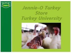 JennieO Turkey Store Turkey University Turkey University Objective
