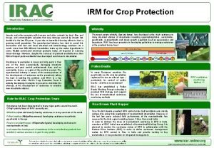 IRM for Crop Protection Insecticide Resistance Action Committee