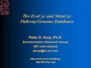 The Eco Cyc and Meta Cyc PathwayGenome Databases