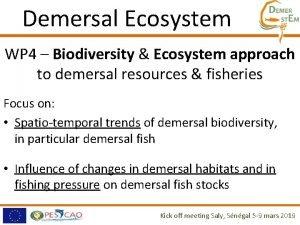 Demersal Ecosystem WP 4 Biodiversity Ecosystem approach to