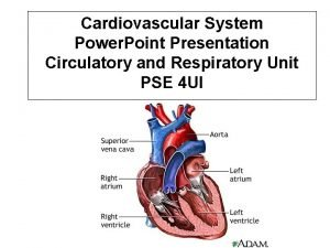 Cardiovascular System Power Point Presentation Circulatory and Respiratory