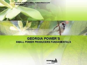 GEORGIA POWERS SMALL POWER PRODUCERS FUNDAMENTALS GEORGIA POWERS