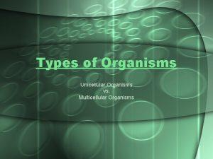 Types of Organisms Unicellular Organisms vs Multicellular Organisms