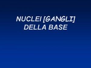 NUCLEI GANGLI DELLA BASE NUCLEI DELLA BASE CLASSIFICAZIONE