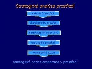 Strategick analza prosted audit vliv prosted charakteristika prosted