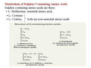 Metabolism of Sulphur Containing Amino Acids Sulphur containing