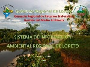 Gobierno Regional de Loreto Gerencia Regional de Recursos