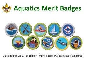 Aquatics Merit Badges Cal Banning Aquatics Liaison Merit