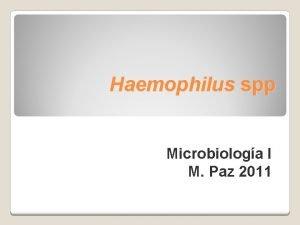 Haemophilus spp Microbiologa I M Paz 2011 Haemophilus