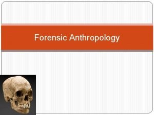 Forensic Anthropology The 206 bones of the human