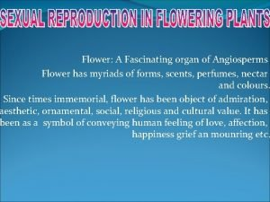 Flower A Fascinating organ of Angiosperms Flower has