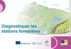 Diagnostiquer les stations forestires Diagnostiquer les stations forestires