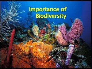 Importance of Biodiversity What is biodiversity Biodiversity Many