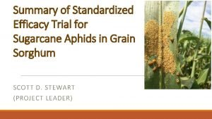 Summary of Standardized Efficacy Trial for Sugarcane Aphids