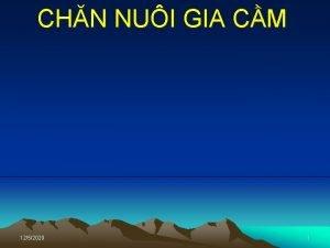 CHN NUI GIA CM 1252020 1 Chuyn Ngun