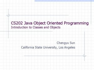 CS 202 Java Object Oriented Programming Introduction to
