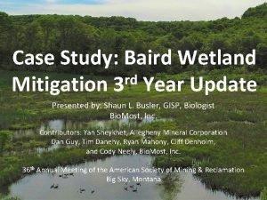 Case Study Baird Wetland rd Mitigation 3 Year