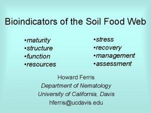 Bioindicators of the Soil Food Web maturity structure