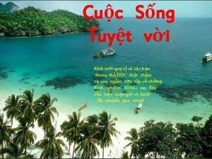 Cuc Sng Tuyt vi Knh mi qu v
