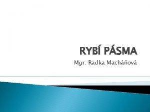 RYB PSMA Mgr Radka Machov RYB PSMA Ryb