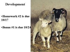 Development Homework 2 is due 1017 Bonus 1