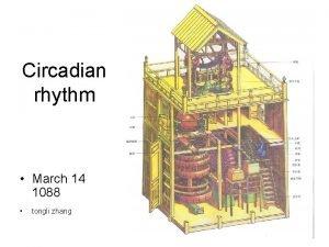 Circadian rhythm March 14 1088 tongli zhang Circadian