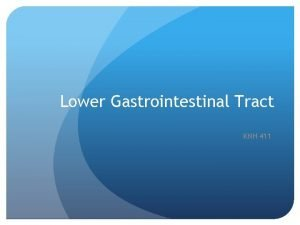 Lower Gastrointestinal Tract KNH 411 Lactose and low
