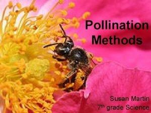 Pollination Methods Susan Martin 7 th grade Science