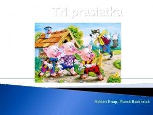 Tri prasiatka Adrin Knap Maro Barboriak Kde bolo