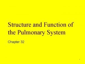 Structure and Function of the Pulmonary System Chapter