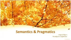 Semantics Pragmatics Jorge Ziga S Paradigmas Lingsticos What