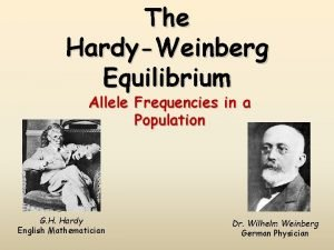 The HardyWeinberg Equilibrium Allele Frequencies in a Population