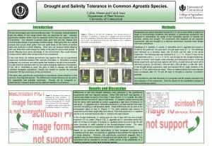 Drought and Salinity Tolerance in Common Agrostis Species