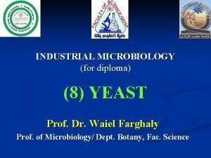 INDUSTRIAL MICROBIOLOGY for diploma 8 YEAST Prof Dr