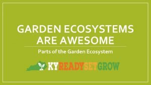 GARDEN ECOSYSTEMS ARE AWESOME Parts of the Garden