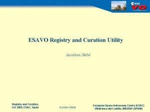 ESAVO Registry and Curation Utility Aurlien Stb Registry