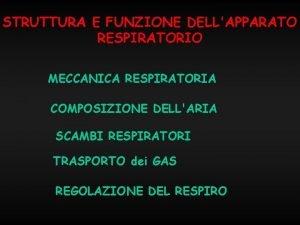 STRUTTURA E FUNZIONE DELLAPPARATO RESPIRATORIO MECCANICA RESPIRATORIA COMPOSIZIONE