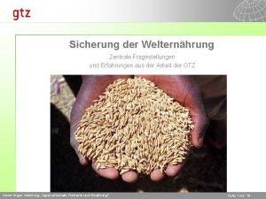 Sicherung der Welternhrung Zentrale Fragestellungen und Erfahrungen aus