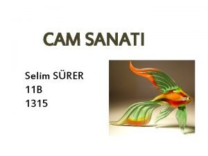 CAM SANATI Selim SRER 11 B 1315 Cam