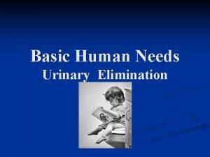 Basic Human Needs Urinary Elimination Urinary Elimination Basic