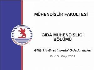 MHENDSLK FAKLTES GIDA MHENDSL BLM GMB 311 Enstrmental