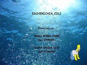 ESCHERICHIA COLI Presentado por ERIKA RIVERA GOMEZ Cod