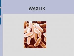 WGLIK ETIOLOGIA Laseczka wglika Bacillus anthracis Warunki tlenowe