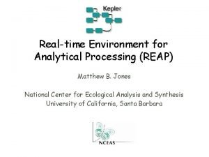Realtime Environment for Analytical Processing REAP Matthew B